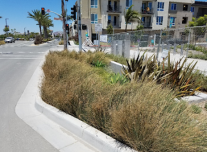 millenia stormwater management